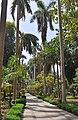 Aswan Kitchener Island R03.jpg