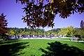 Autumn, Stanley Park Oct, 2015 - 21965161551.jpg