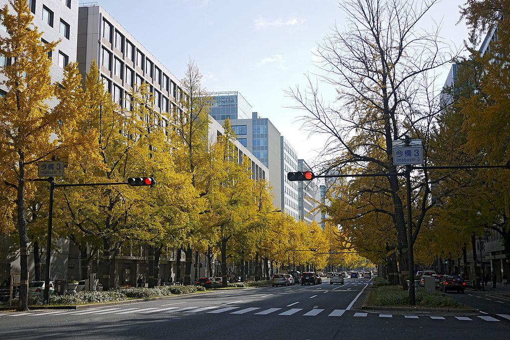 Autumn in Mido-suji Osaka02n