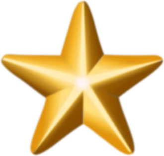 Leonard F. Chapman Jr. - Image: Award star (gold)