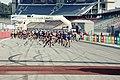 BASF FC 2013 Inline.jpg