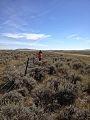BLM Montana Improves Safety for Wildlife for National Public Lands Day (15174646229).jpg