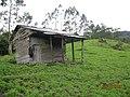 BUENAVISTA - panoramio.jpg