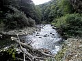 Banat,Nera Canyon - panoramio (18).jpg