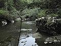 Banat, Nera Canyon - panoramio (47).jpg
