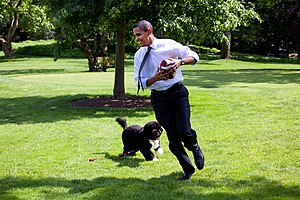 President Barack Obama, runs away from the fam...
