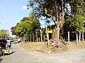 Barangay's of pandi - panoramio (118).jpg