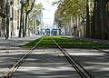 Barcelona Trams (2927290927).jpg