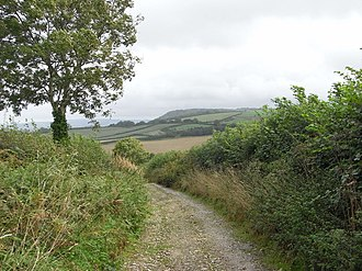 Alton Pancras - Barnes's Lane on the northern boundary of the parish, looking east toward Church Hill
