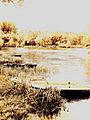 Barques haut de Chalou.jpg