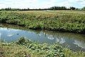 Bassin de Saulx à Saulx-les-Chartreux le 21 août 2015 - 04.jpg