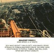 Scala Beaufort, forza 9