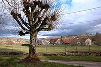 Bellenot-sous-pouilly.JPG