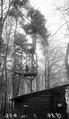 Beobachtungsposten an der elsässischen Grenze - CH-BAR - 3236870.tif