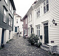Bergenssmau (151844).jpg