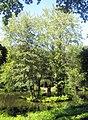 Berlin, Tiergarten, Rousseau-Insel.jpg