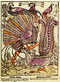 Birds of Paradise Russian copperplate.jpg