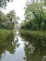 Birmingham and Fazeley Canal near Curdworth, Warwickshire - geograph.org.uk - 1748851.jpg
