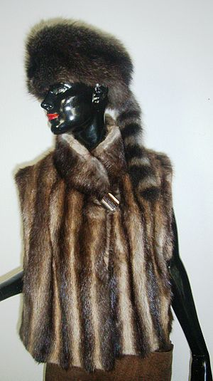 Coonskin cap - A mannequin with a coonskin cap