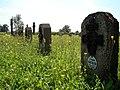 Biskupice Radłowskie - cmentarz wojenny nr 258 (18) - DSC04670 v1.jpg
