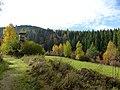 Black Forest- hunter's blind (10561939034).jpg
