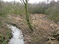 Blackwell Trail view of Normanton Brook - geograph.org.uk - 1140197.jpg