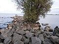 Blahovisnyi, Cherkasy, Cherkas'ka oblast, Ukraine - panoramio - юра запеченко (18).jpg