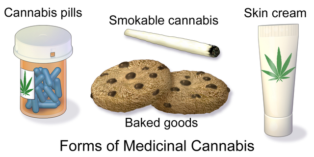 a description of different effects of using marijauna Marijuana strains & cannabis genetics welcome to the original marijuana strain library, where you will find detailed information on cannabis strains, including strain origins and genetics, strain-specific grow tips, smoke reports and descriptions of the effects, and more.