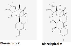Blazeispirol - Blazeispirol C and V