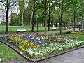 Blumen Kurpark2.jpg