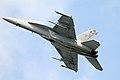 Boeing FA-18F Super Hornet 10 (7567981036).jpg