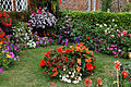 Border and garden Goodnestone Dover Kent England.jpg