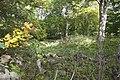 Borgområde utanför Äsperöd, Tomelilla Kommun.jpg