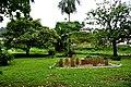 Botanic garden limbe121.jpg