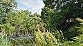 Botanischergartendresden-juli2016 - 1.jpeg