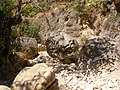 Boulders in the river, which is dry in this pic - panoramio.jpg