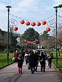 Bournemouth Gardens, Chinese lanterns - geograph.org.uk - 1713498.jpg