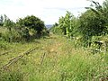Bowes Railway. - geograph.org.uk - 513242.jpg