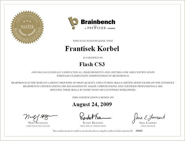 Brainbench Flash CS3.jpg