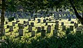 Braunton (Devon, UK), St Brannock's Church -- 2013 -- 00233.jpg