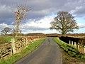 Breckstreet Lane - geograph.org.uk - 308531.jpg