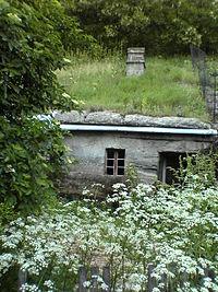 Brhlovce typical dwelling.JPG