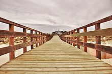 Bridge over the dunes.jpg