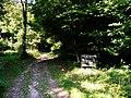 Bridleway to Ashford Hanger - geograph.org.uk - 955535.jpg
