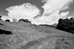 Briones Hills - Trail in the Briones Hills.