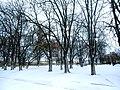 Brody, Lviv Oblast, Ukraine - panoramio (227).jpg