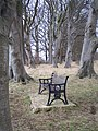 Bruce Anthony Stait Seat near Norbury Camp - geograph.org.uk - 135559.jpg