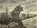 Bruxelles à travers les âges (1884) (14780109122).jpg