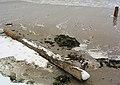 Buhnen groynes Balticsea.jpg