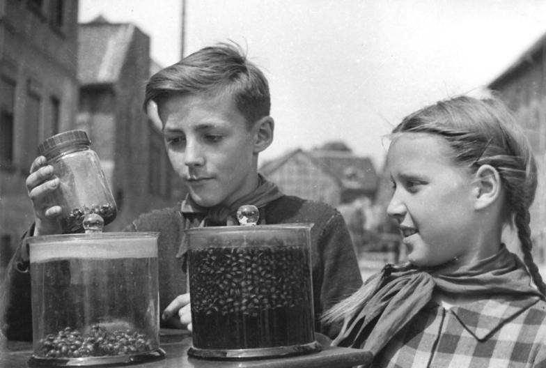 Bundesarchiv Bild 183-15032-0001, Vahldorf, Gesammelte Kartoffelkäfer